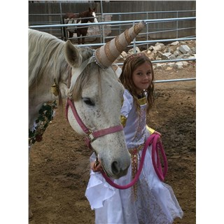 Horsin' Around Fall Festival 2016
