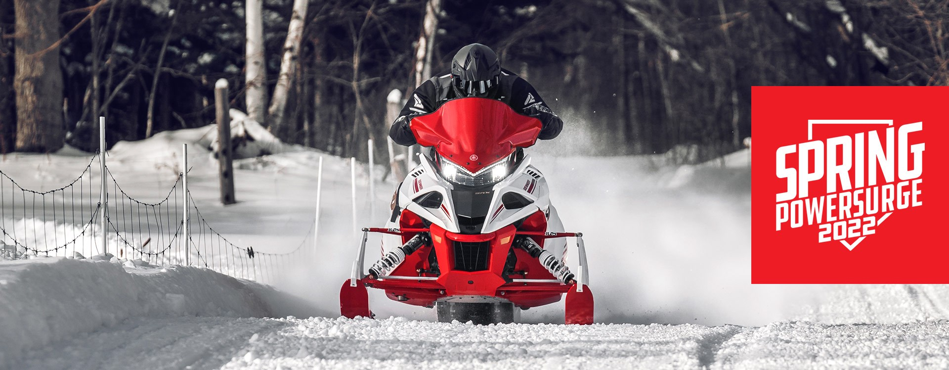 Yamaha Snowmobile Specials