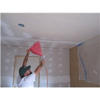 Rich spraying the ceiling with 'cottage cheese'