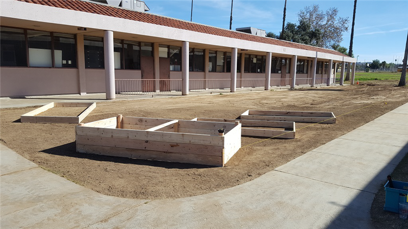 1/18/2018 1st of 40 raised garden boxes built