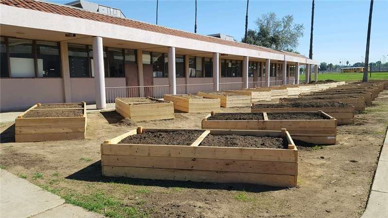 2/9/2018 25 raised gardens constructed