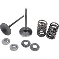 Kibblewhite BlaCk DiamonD Valve anD Spring Kit 06-07 Polaris Sportsman 800 EFI